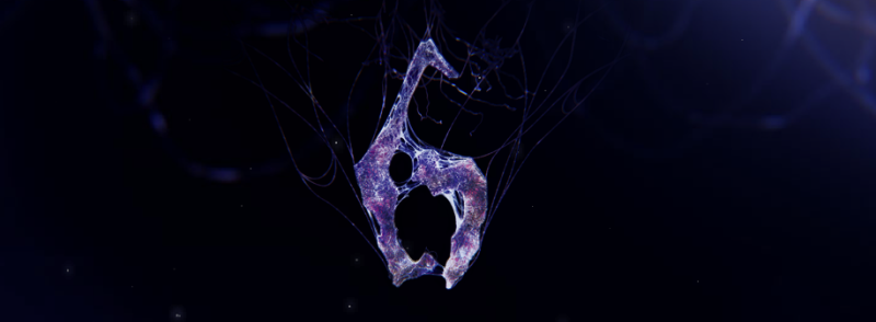 Image of the Resident Evil 6 logo