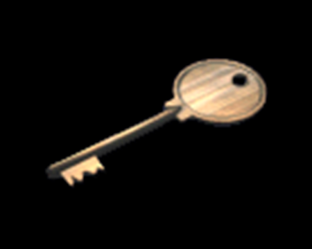 Image of Main Gate Key