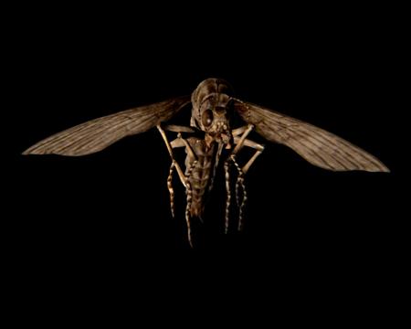 flying bug (resident evil 7 biohazard) | evil resource  evil resource