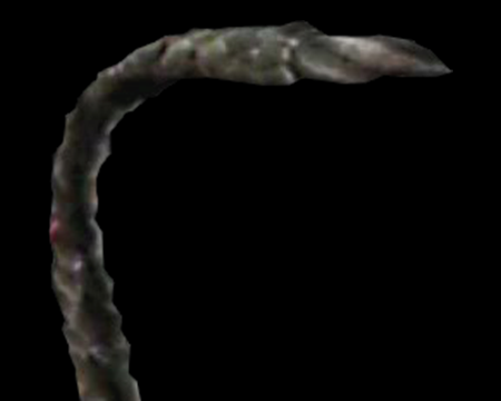 Image of Tentacle