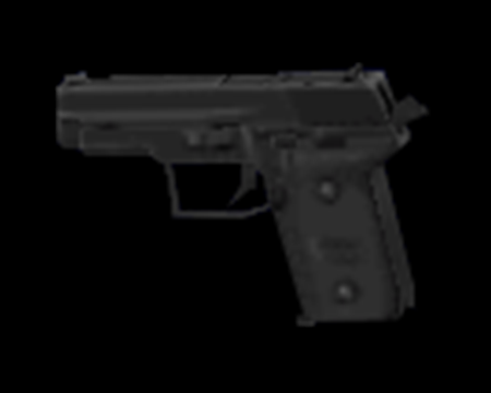 Image of Handgun SG
