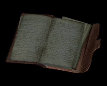 Image of The Old Man's Journal