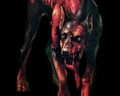 Image of Cerberus