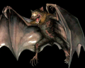Image of Giant Bat