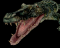 Image of Giant Alligator