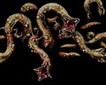 Image of 5 Sliding Worms