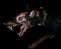 Image of 2 Zombie Dogs