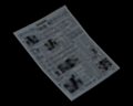 Image of Newspaper 2