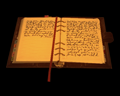 Image of Mysterious Journal